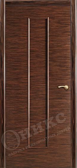 Фото двери ПЛАЗА